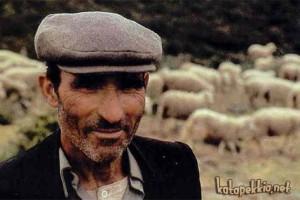 pastore-sardo